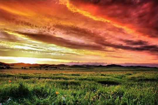 塞罕坝的夕阳